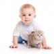 Календарь развития ребенка в 12 месяцев (что умеет ребенок в 12 месяцев?)