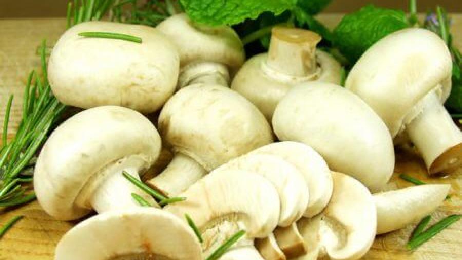 Можно ли кормящей маме грибы шампиньоны?
