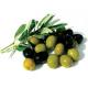 Можно ли оливки кормящей маме?