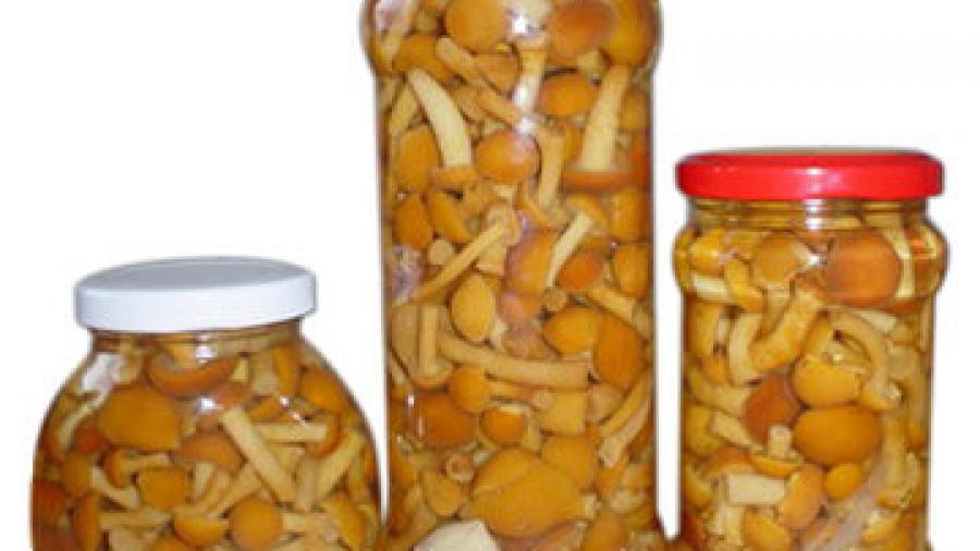 Можно ли кормящей маме маринованные грибы?