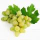 Можно ли кормящей маме зеленый виноград?
