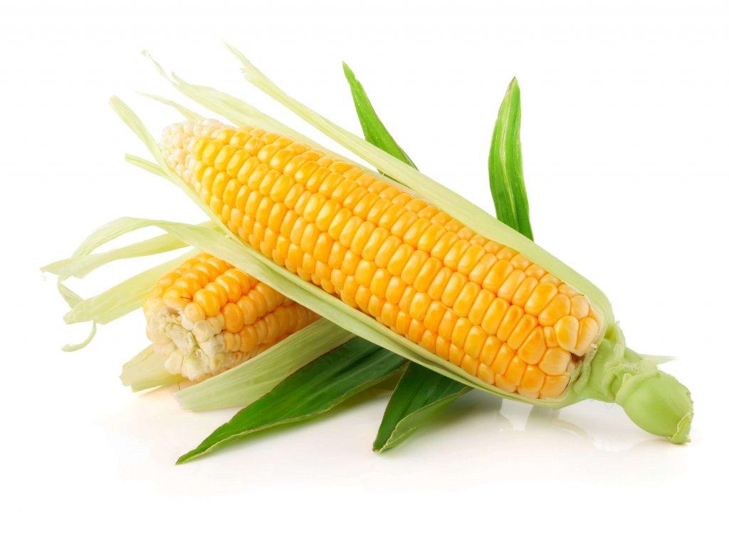 Кукурузные рыльца при грудном вскармливании