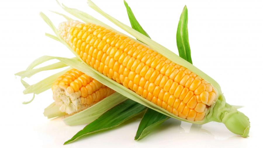 Можно ли кукурузу при грудном вскармливании?